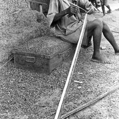 Man Making Strips for Weaving