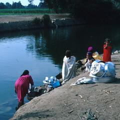 Washing Dishes and Laundry in a Nile River Canal