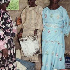 Cassava and processed gari
