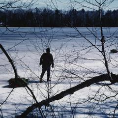 John Snow's nephew drags a sled with tree bough bundles across frozen Sugarbush Lake to an ice-fishing site