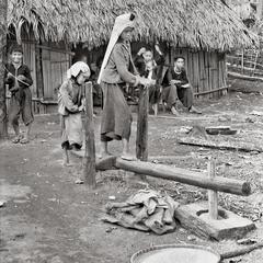 Children thresh rice 2
