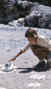 Katy A. Lowenberg (Field Assistant) with Nazca Booby (Sula granti)