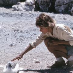 Katy A. Lowenberg (Field Assistant) with Nazca Booby (Sula granti)