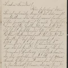 [Letter from Hanna Sternberger to her brother Karl Sternberger, November 1885]
