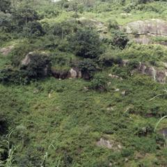 Ife hill landscape