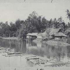 Bamboo rafts floating in river
