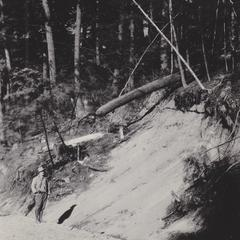 Railroad cut through sandy outwash