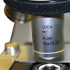 View of 10x objective of the Leica microscope used in General Botany taught at the University of Wisconsin-Madison.