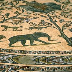 Volubilis Mosaic Floor with Lion