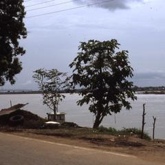 Road view of the Niger River