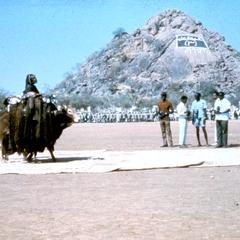 "Display of the ""Decoration of the Beast""by Baggaras of Central Sudan"