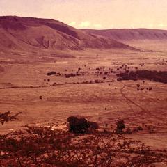 Landscape in Ngorongoro Crater