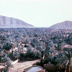 In Figuig (Zanaga Qsar) Looking Toward Algeria