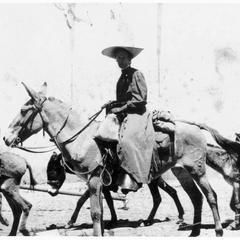 Helen Louise Allen's mother on a mule in Turkey