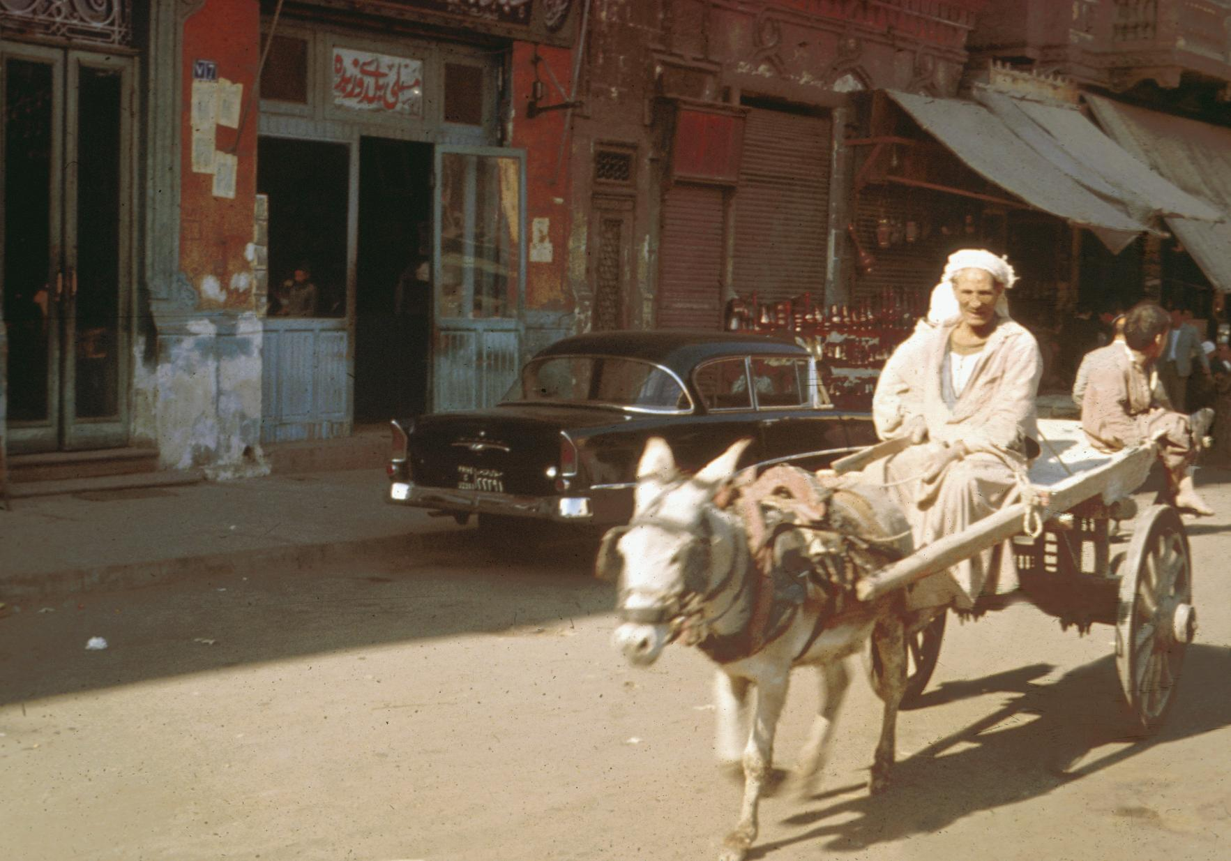 Donkey and Cart in Cairo