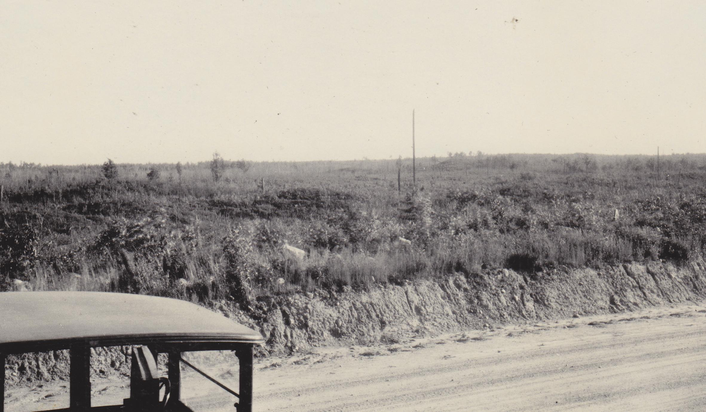 Moraine near Hatley, WI