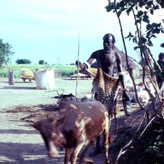 Earth Priest Dressed in Cermonial Leopard Skin