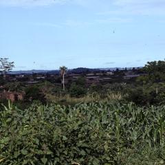 Farm lands on the outskirts of Ilesa