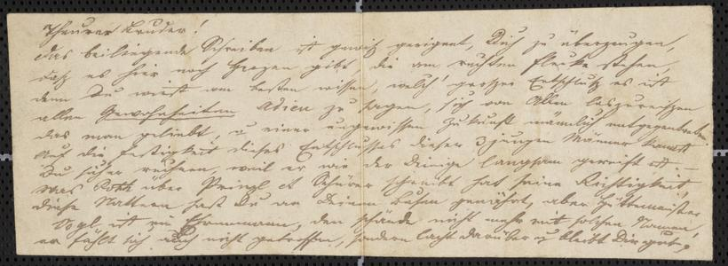 [Letter from Kajetan Sternberger to his brother, Jakob Sternberger, ca. May 1853]
