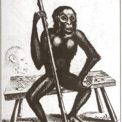 The Satier, Sauage, Wild-man, Pigmy, Orang-outang, Chimp-anzee &c., A.D. 1757, Geo. edwards, Delin.et Sculp.