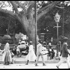 Street scene in Kingston