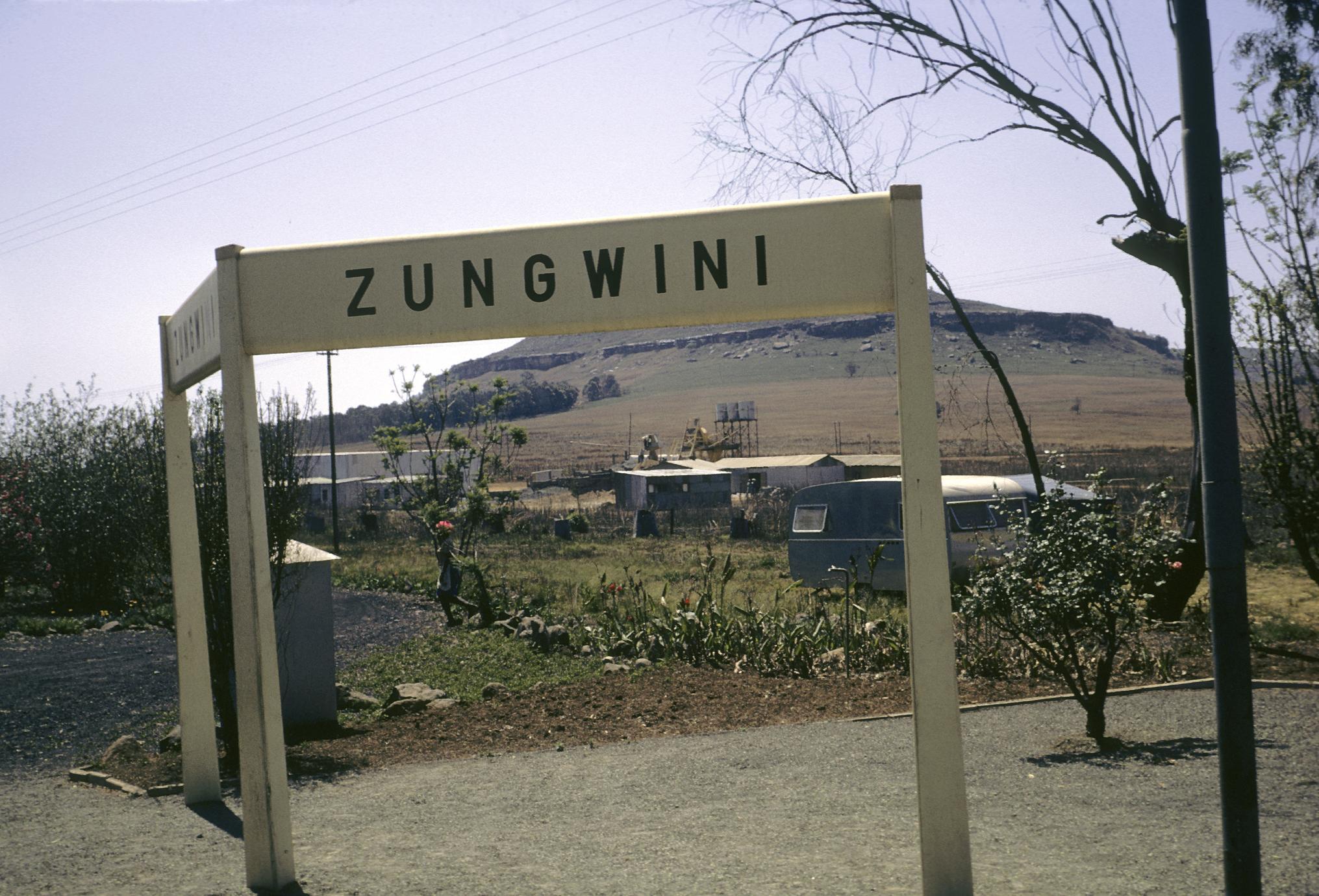 Zungwini