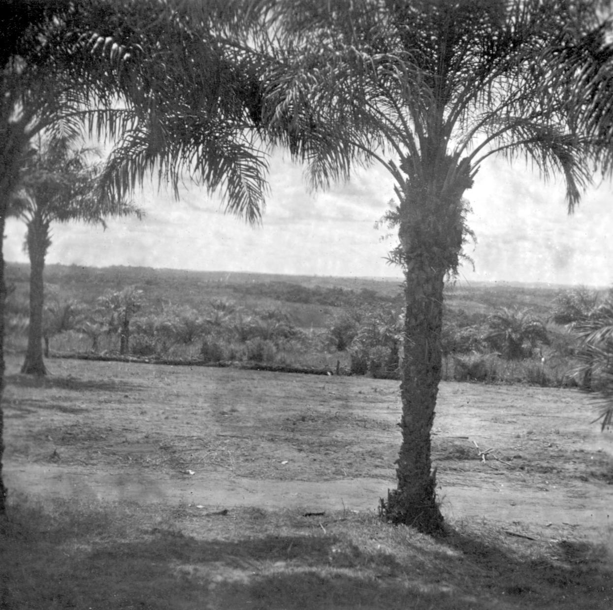 View From the Kuba-Bushong Capital of Nsheng
