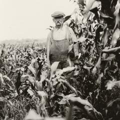 McDowell's farm
