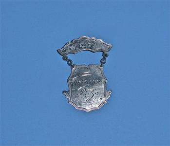 Women's Christian Temperance Union pin