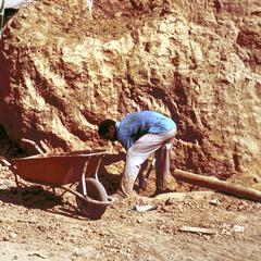 Collecting Mud from an Anthill for Building