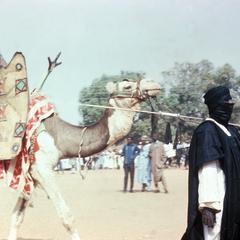 Tuareg Man and Camel at Big Sallah Celebration