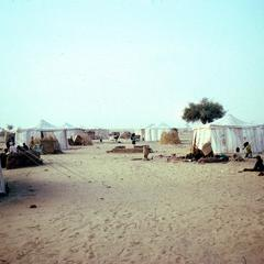 A Refugee Camp Provisioned by the Red Cross Outside Zinder