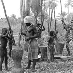 Closer View of Pounding Cooked Palm Nuts to Make Oil for Own Consumption