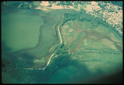 Aerial view of Gardner Marsh and Lake Wingra, University of Wisconsin Arboretum