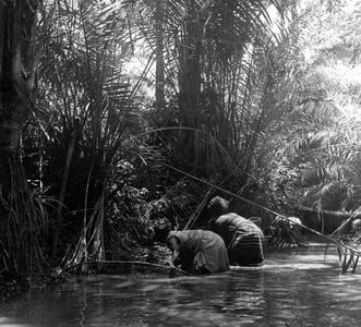 Women Fishing with Nets in River