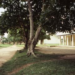 Port Harcourt school grounds