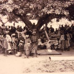 Mats and people under a tree