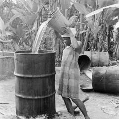 Pouring Water on the Palm Nuts to Cook for Making Oil
