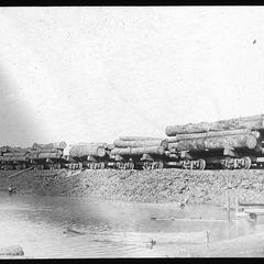 Train of logs
