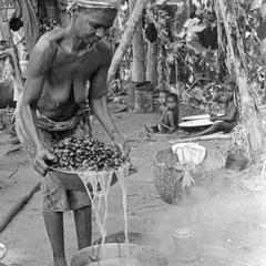 Pouring Water Off the Palm Nuts Before Pounding for Making Oil
