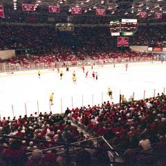 1995 NCAA Hockey Tournament