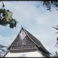 Nam Tha : roof of vat