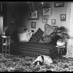 Victorian interior with a dog