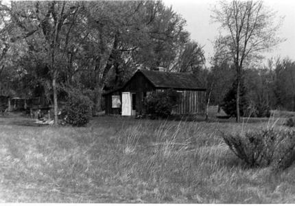 View of shack from southeast during summer